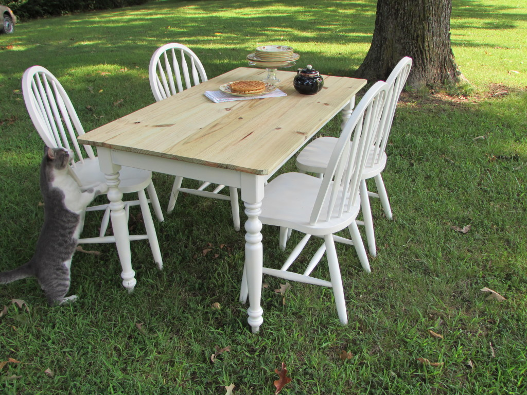 "FARM TABLE And CHAIR SET (31"" x 54"")"