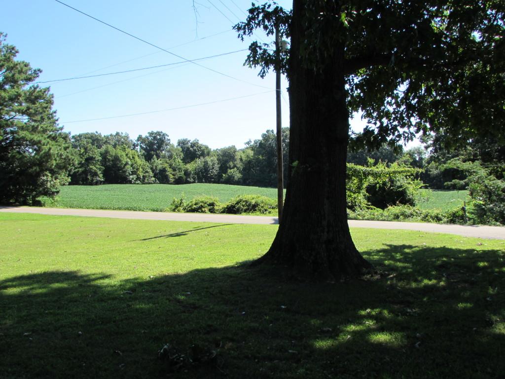 Front Farm View